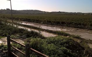 http://www.seguonews.it/esonda-il-fiume-dirillo-allagata-un-tratto-della-strada-che-collega-gela-ad-acate