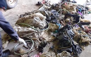 http://www.seguonews.it/gela-differenziata-pezzi-metallici-tra-i-rifiuti-organici-danneggiato-il-blocco-trasportatore-dellimpianto