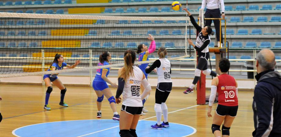 Volley, a Caltanissetta i quarti di Coppa Sicilia: l'Albaverde incontra la Pallavolo Zafferana