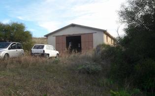 http://www.seguonews.it/bene-confiscato-alla-mafia-consegnato-allassociazione-tam-tam-di-san-cataldo-al-via-la-coltivazione-biologica