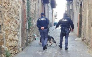 http://www.seguonews.it/caltanissetta-controlli-antidroga-della-polizia-il-cane-indira-fiuta-droga-tra-muri-e-contatori-dellacqua