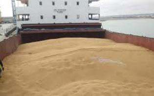 http://www.seguonews.it/nave-carica-di-grano-al-porto-di-pozzallo-corrao-m5s-ci-risiamo-il-mercato-cerealicolo-siciliano-e-in-ginocchio