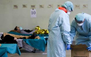 http://www.seguonews.it/coronavirus-lo-studio-delliss-dei-deceduti-7-su-10-sono-uomini-17-le-persone-con-meno-di-50-anni