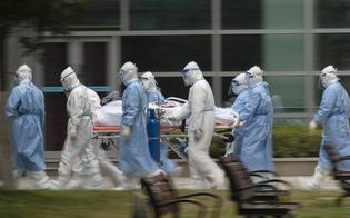 http://www.seguonews.it/coronavirus-in-sicilia-nuovo-aumento-dei-nuovi-contagiati-adesso-i-malati-sono-799-118-rispetto-a-ieri