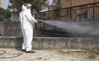 https://www.seguonews.it/gela-al-via-da-questa-sera-la-disinfezione-delle-aree-pubbliche-strade-e-marciapiedi-
