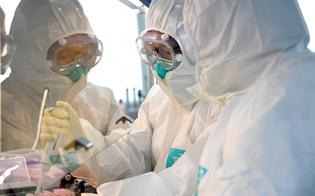 https://www.seguonews.it/coronavirus-allarme-varianti-in-italia-ecco-quali-sono-quelle-presenti-in-sicilia