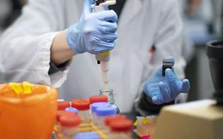 http://www.seguonews.it/coronavirus-il-cts-se-i-contagi-salgono-lockdown-locali-inevitabili-anche-giovani-in-terapia-intensiva