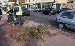 http://www.seguonews.it/gela-riprendono-le-attivita-di-manutenzione-del-verde-pubblico-lavoratori-della-ghelas-lavoreranno-in-sicurezza