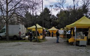 http://www.seguonews.it/caltanissetta-allestito-il-mercato-di-campagna-amica-in-via-lazio-arriva-la-polizia-municipale