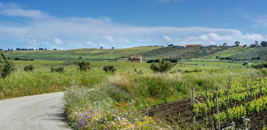 """Settimana di bel tempo in Sicilia: scatta l'allarme Pasquetta. Borrelli: """"Confidiamo nel buon senso"""""""