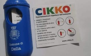 https://www.seguonews.it/delia-il-comune-consegna-a-domicilio-cikko-si-potranno-spegnere-fino-a-10-mozziconi-di-sigaretta-in-pochi-istanti