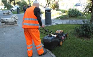 http://www.seguonews.it/reddito-di-cittadinanza-i-beneficiari-saranno-impiegati-nella-pulizia-del-verde-gestione-spiagge-e-mercatini