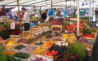 http://www.seguonews.it/sommatino-il-sindaco-elisa-carbone-firma-ordinanza-per-riapertura-mercato-settimanale