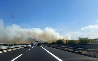 https://www.seguonews.it/incendio-sullautostrada-tra-palermo-e-villabate-fiamme-divampate-nei-pressi-di-uno-spartitraffico