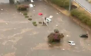 http://www.seguonews.it/tragico-nubifragio-a-palermo-dieci-bimbi-in-ospedale-per-ipotermia-il-piu-piccolo-ha-soli-9-mesi