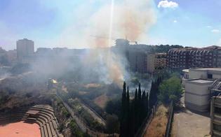 https://www.seguonews.it/leandro-janni-lincendio-al-parco-palmintelli-inevitabile-conseguenza-della-cattiva-gestione-del-patrimonio-archeologico