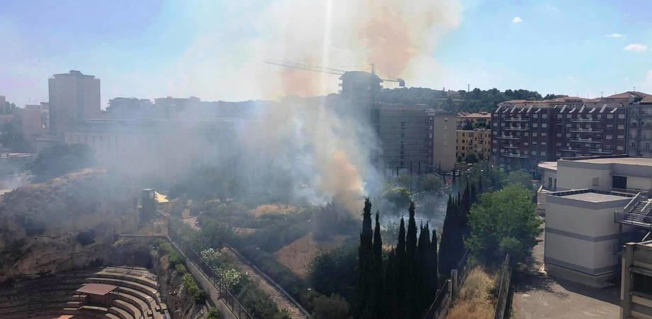 """Leandro Janni: """"L'incendio al parco Palmintelli? Inevitabile conseguenza della cattiva gestione del patrimonio archeologico"""". Le foto del disastro"""
