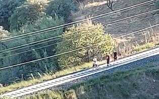 http://www.seguonews.it/migranti-in-fuga-il-centrodestra-nisseno-attacca-gambino-sue-ultime-dichiarazioni-farneticanti