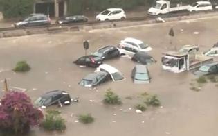 http://www.seguonews.it/nubifragio-a-palermo-sub-cercano-altre-vittime-in-viale-della-regione-la-citta-e-in-ginocchio