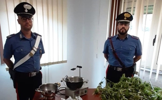 https://www.seguonews.it/in-giro-per-la-citta-con-un-sacco-di-marijuana-arrestati-due-sancataldesi-trovati-con-due-chili-di-droga