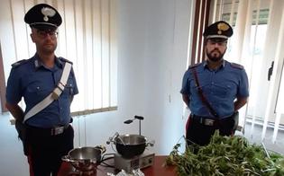 http://www.seguonews.it/in-giro-per-la-citta-con-un-sacco-di-marijuana-arrestati-due-sancataldesi-trovati-con-due-chili-di-droga