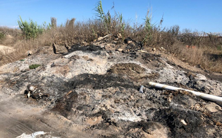 http://www.seguonews.it/erosione-della-costa-plastica-bruciata-in-contrada-bulala-sopralluogo-della-capitaneria-di-porto-di-gela
