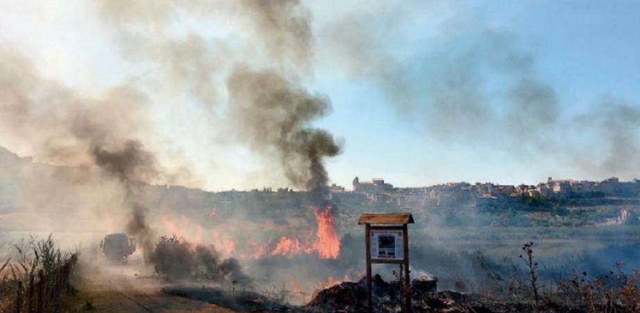 """Serradifalco, incendio Riserva naturale Lago Soprano, Mancuso (FI): """"Mai più pericoli per la biodiversità"""""""
