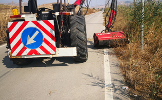 https://www.seguonews.it/butera-fitta-vegetazione-invade-la-strada-di-accesso-a-tenutella-effettuati-i-lavori-di-manutenzione