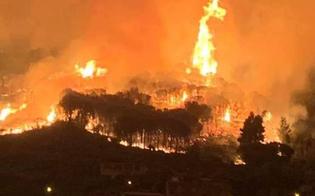 https://www.seguonews.it/incendi-senza-sosta-la-sicilia-brucia-ancora-in-arrivo-gli-aiuti-dalle-altre-regioni
