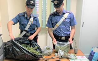 https://www.seguonews.it/trovato-a-casa-con-un-chilo-di-marijuana-arrestato-a-riesi-un-pregiudicato-rumeno