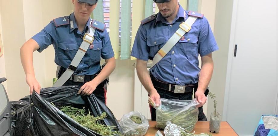 Nascondeva a casa un chilo di marijuana: arrestato a Riesi un pregiudicato rumeno