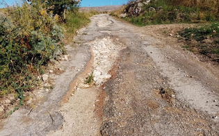https://www.seguonews.it/san-cataldo-la-sp-43-versa-in-condizioni-disastrose-protestano-allevatori-e-imprenditori-agricoli