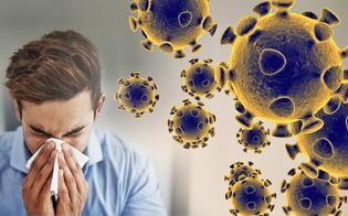 https://www.seguonews.it/covid-esperti-svelano-il-motore-della-pandemia-dagli-asintomatici-ai-superdiffusori-cosi-avvengono-i-contagi