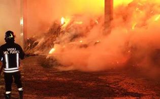 https://www.seguonews.it/fienile-distrutto-dalle-fiamme-nella-notte-a-san-cataldo-il-rogo-e-di-natura-dolosa
