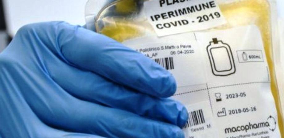 Caltanissetta, il Nursind: ospedale di Gela ideale per donazione plasma anticovid, attivare subito un centro di raccolta