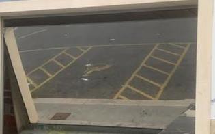 http://www.seguonews.it/capra-vede-la-propria-immagine-riflessa-e-sfonda-le-vetrate-di-un-supermercato-il-titolare-ha-pensato-ad-un-furto