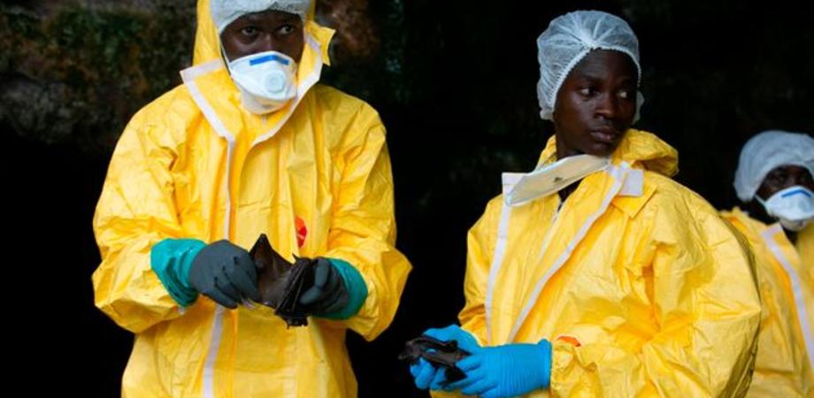 La Guinea dichiara il ritorno dell'epidemia di Ebola: già sette casi con 3 morti