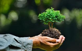 https://www.seguonews.it/luomo-e-lambiente-rischi-e-risorse-workshop-al-liceo-mignosi-di-caltanissetta
