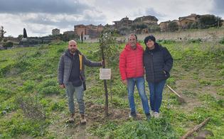 https://www.seguonews.it/san-cataldo-ripartiamo-insieme-compie-1-anno-e-pianta-un-carrubbo-