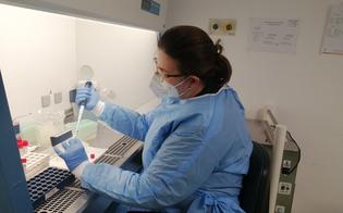 https://www.seguonews.it/coronavirus-in-provincia-di-caltanissetta-8-casi-di-variante-inglese