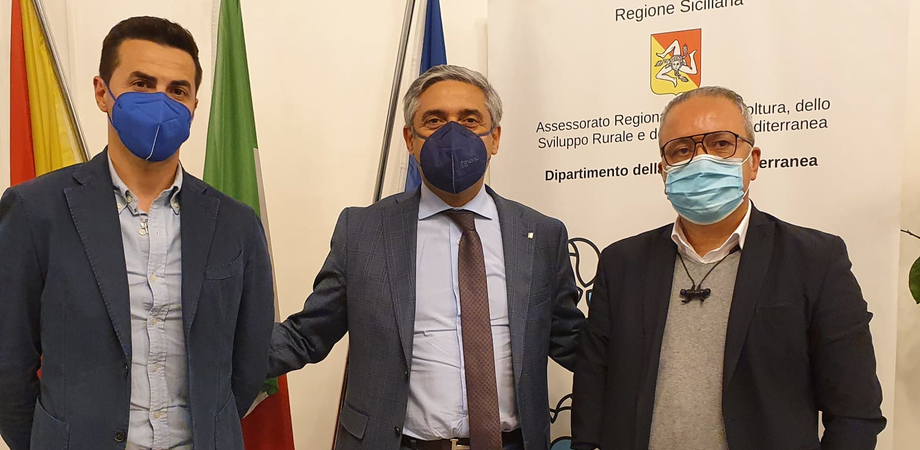 Dighe di Gela in stato di abbandono, missione a Palermo per strappare promesse alla Regione