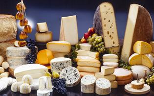 https://www.seguonews.it/levoluzione-del-formaggio-nel-weekend-enna-sara-centro-delle-eccellenze-lattiero-casearie-dellisola