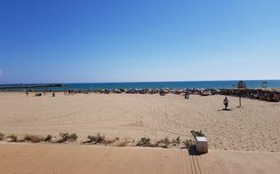 https://www.seguonews.it/pulizia-delle-spiagge-a-gela-licata-stop-polemiche-ancora-pochi-giorni-e-poi-prendera-il-via