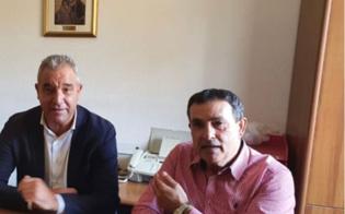 https://www.seguonews.it/lagricoltura-gelese-boccheggia-la-denuncia-della-cisl-serve-un-tavolo-tecnico