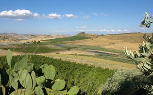 https://www.seguonews.it/dall11-al-13-giugno-20-operatori-turistici-visiteranno-caltanissetta-per-il-primo-educational-tour-del-centro-sicilia