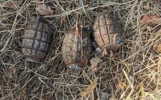 https://www.seguonews.it/caltanissetta-trovano-bombe-a-mano-mentre-effettuano-scavi-in-arrivo-artificieri-
