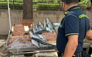https://www.seguonews.it/termini-imerese-sequestrati-18-chili-di-pesce-sprovvisto-di-documenti-su-tracciabilita