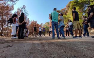Le Vie dei Tesori, 9mila visitatori in 12 città: anche a Caltanissetta boom di partecipanti