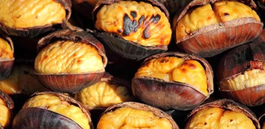 Le castagne, alimento ricco di minerali e proprietà nutritive: fanno ingrassare?
