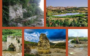 https://www.seguonews.it/acqua-mater-vitae-giu-il-sipario-a-caltanissetta-sul-contest-fotografico-riconoscimenti-ai-partecipanti